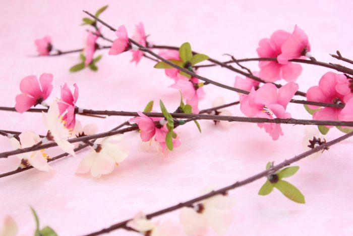 【ストールの巻き方講座】今日は立春!春っぽさを演出するストールの取り入れ方!