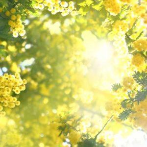 【一押しオススメアイテム】リネンの季節到来!ナチュラルに着こなすリネンスタイル♪