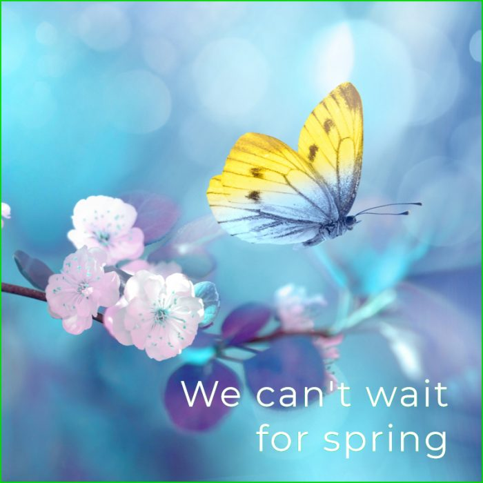 【 お値段以上、アラモ】今買って、春まで着られる♪ 何を着れば良いかわからない、冬から春にはこのお値段以上アイテム!